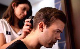 hajátültetés árak